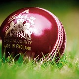 GB 800x800 Cricket Ball Colour.jpg